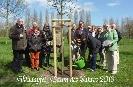 Buergerverein Dinkelaue Gronau Bilder:  2013 04-25 Baumpflanzung Baumpflanzung 2013