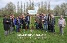 Buergerverein Dinkelaue Gronau Bilder:  2015 05-05 Baumaktion Baumaktion 2015