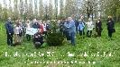 Buergerverein Dinkelaue Gronau Bilder:  2017 04-08 Baum des Jahres Baum des Jahres 2017