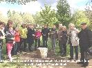 Buergerverein Dinkelaue Gronau Bilder:  2017 04-25 Tage des Baumes Uebergabe der Orientierungstafel 2017